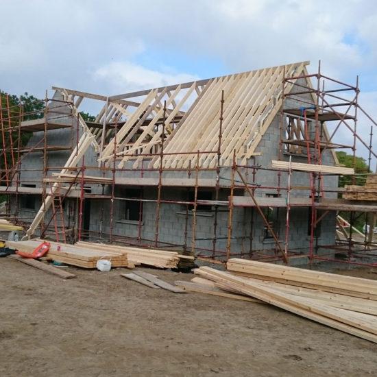 New Dwelling in Kinsealy